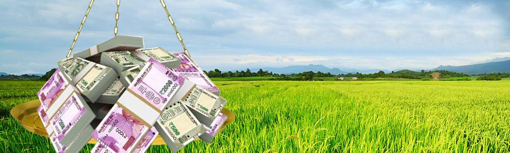 Non performing asset, crop loan