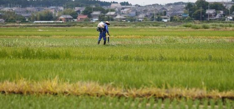 कृषि ऋण वितरण लक्ष्य बढ़कर हो सकता है 11 लाख करोड़ रुपये
