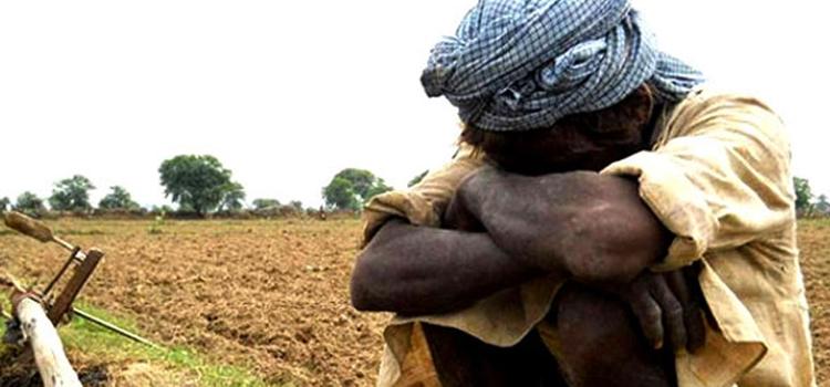 डेढ़ गुना आमदनी बढ़ने के बाद भी किसानों को होगा घाटा, MSP को ऐसे समझिए!